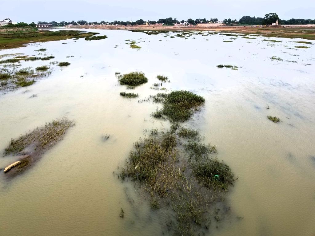 Mahanadi River in 2017